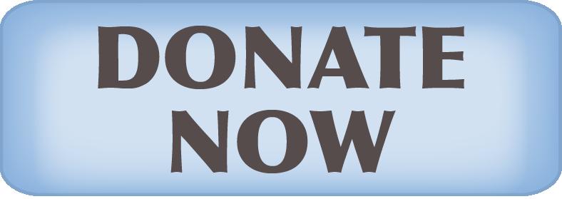 DonateNowBlue