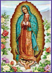 Our of Lady of Guadalupe